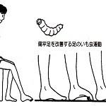 imomushi